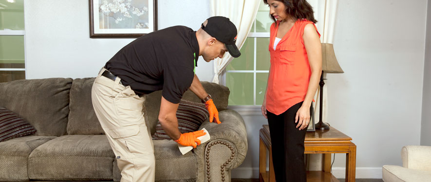 Lawrenceville, GA carpet upholstery cleaning